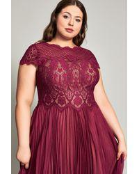 Tadashi Shoji Red Drusa Chiffon Lace Tea-length Dress - Plus Size