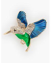 Talbots - Green Hummingbird Pin - Lyst