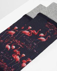 Ted Baker Blue Flamingo Printed Socks for men