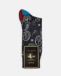 Ted Baker Pantherella Socken Mit Paisley-print in Blue für Herren