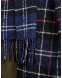 Barbour Blue Men's Tartan Lambswool Scarf Navy/red for men