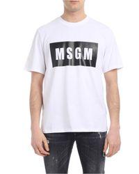 T-shirt bianca Box logo di MSGM in White da Uomo