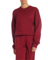 Y-3 Red Ylove Crop Sweatshirt In Bordeaux