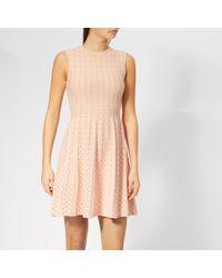 Ted Baker Pink Vellia Knitted Flippy Skater Dress