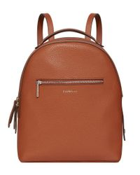 Fiorelli Brown Anouk Large Backpack