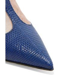 Valentino Garavani Blue Velvet-paneled Lizard Pumps