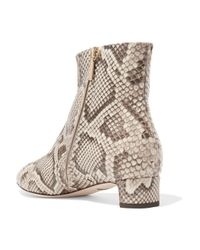 Dolce & Gabbana - Multicolor Python Ankle Boots - Lyst
