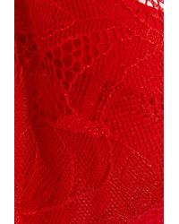 Mimi Holliday by Damaris - Red Chantilly Lace-trimmed Corded Stretch-lace Thong - Lyst