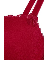 Stella McCartney - Red Millie Drawing Lace And Velvet Contour Bra - Lyst