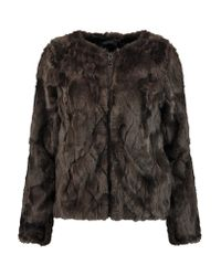 Line Multicolor Shearling Jacket