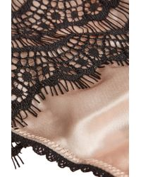 Mimi Holliday by Damaris Black Silk-blend And Lace Plunge Bra