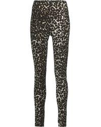 Norma Kamali Multicolor - Leopard-print Stretch-cady Leggings - Leopard Print