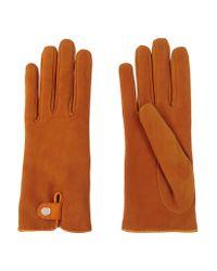 Causse Gantier Orange Louise Nubuck Gloves