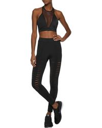Cushnie et Ochs - Black Mesh-paneled Stretch Sports Bra - Lyst