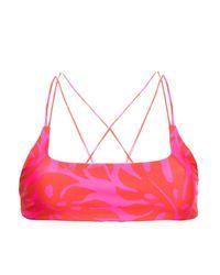 Mikoh Swimwear Printed Bikini Top Tomato Red