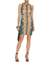 Roberto Cavalli Multicolor Snake-print Ponte Mini Dress
