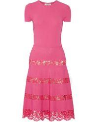 Valentino Pink Lace-paneled Jersey Dress