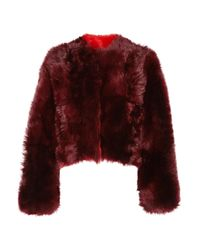 CALVIN KLEIN 205W39NYC Multicolor Cropped Shearling Coat Burgundy