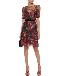 Marchesa notte Multicolor Woman Velvet-trimmed Embroidered Tulle Dress Fuchsia