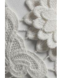 Victoria, Victoria Beckham White Appliquéd Cotton Guipure Lace Pants