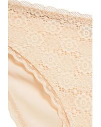 Stella McCartney Natural Amber Imagining Stretch-lace And Jersey Low-rise Briefs Beige