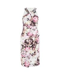 TK Maxx brand Multicolor Ed Floral Midi Dress