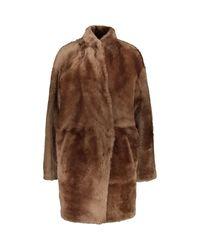 TK Maxx brand Brown Lamb Skin Reversible Coat