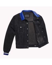 Tommy Hilfiger Blue Contrast Collar Suede Jacket for men