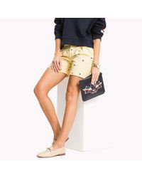 Tommy Hilfiger Multicolor Embroidered Regular Fit Shorts