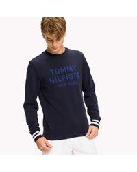 Tommy Hilfiger Blue Graphic Jumper for men