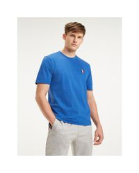 Tommy Hilfiger Blue Relaxed Fit Badge T-shirt for men