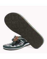 Tommy Hilfiger Green Signature Colour Beach Sandals for men