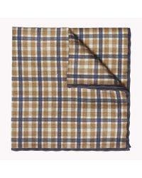 Tommy Hilfiger Multicolor Cotton Silk Pocket Square for men