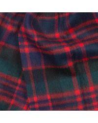 Sciarpa scozzese Macdonald New Check di Barbour in Red