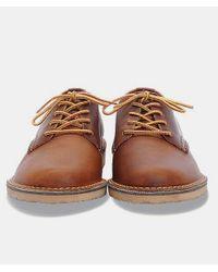 Red Wing Kupfer Weekender Oxford 3303 Schuhe in Brown für Herren