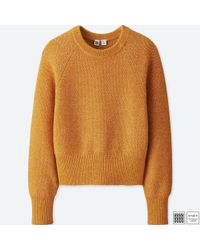 Uniqlo - Orange Women U Cotton Crewneck Cropped Sweater - Lyst