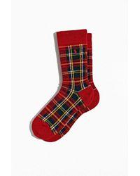 Polo Ralph Lauren Red Cashmere Oversized Tartan Crew Sock for men
