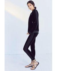 bec5517ac Lyst - adidas Originals Originals 3 Stripe Velvet Legging in Black