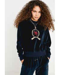 Tommy Hilfiger Blue Crest Collection Velvet Crew Neck Sweatshirt