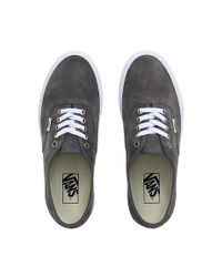 Vans Gray Pig Suede Authentic Schuhe