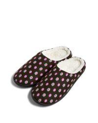Vera Bradley Multicolor Printed Slippers
