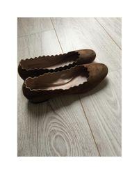 Chloé \n Brown Suede Ballet Flats
