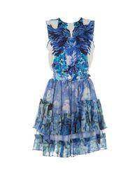 Roberto Cavalli \n Blue Silk Dress