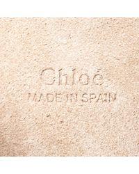 Chloé Gray Faye Leder Cross Body Tashe