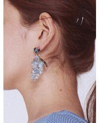 BABY CENTAUR - Baby Crystal Grape Earring Blue - Lyst