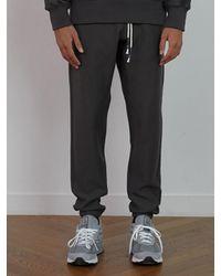 W Concept Gray Charcoal Grey Lounge Pants_tc1ptuf0805 for men