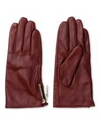 Whistles - Multicolor Zip Side Leather Glove - Lyst