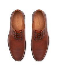 Whistles Brown Grained Leather Derby for men