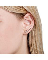 Astrid & Miyu - Metallic Black Magic Circle Earrings In Gold - Lyst