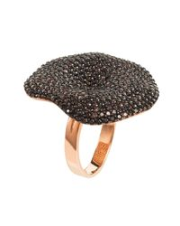 Latelita Multicolor Alessandra Cocktail Ring Rosegold Chocolate Cz